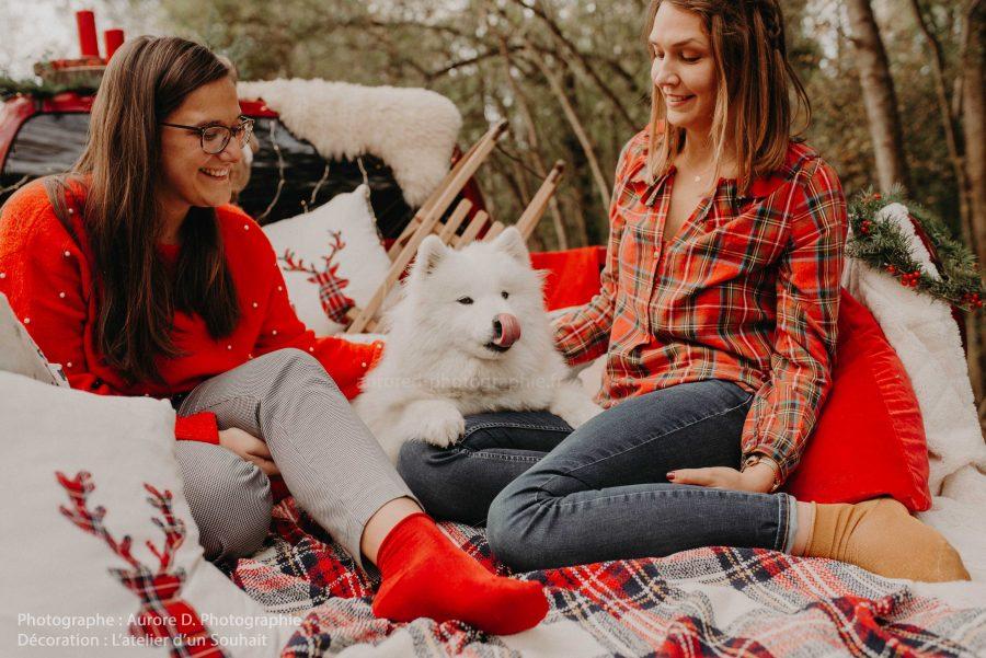 Décor de Noël avec chien dans un pick-up