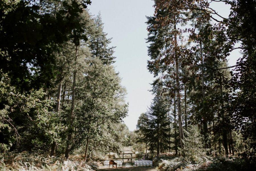 Décoration de cérémonie laïque nature en forêt