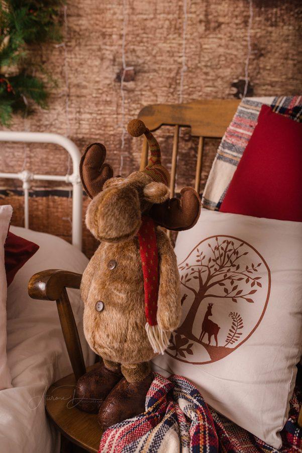 décor Noël avec caribou