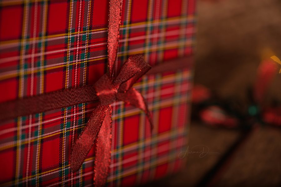 Décoratrice pour séance photo Noël sur Tours