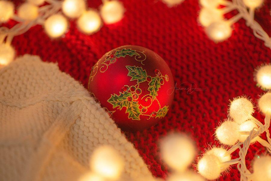 Décoratrice pour séance photo de Noël sur Tours - 37