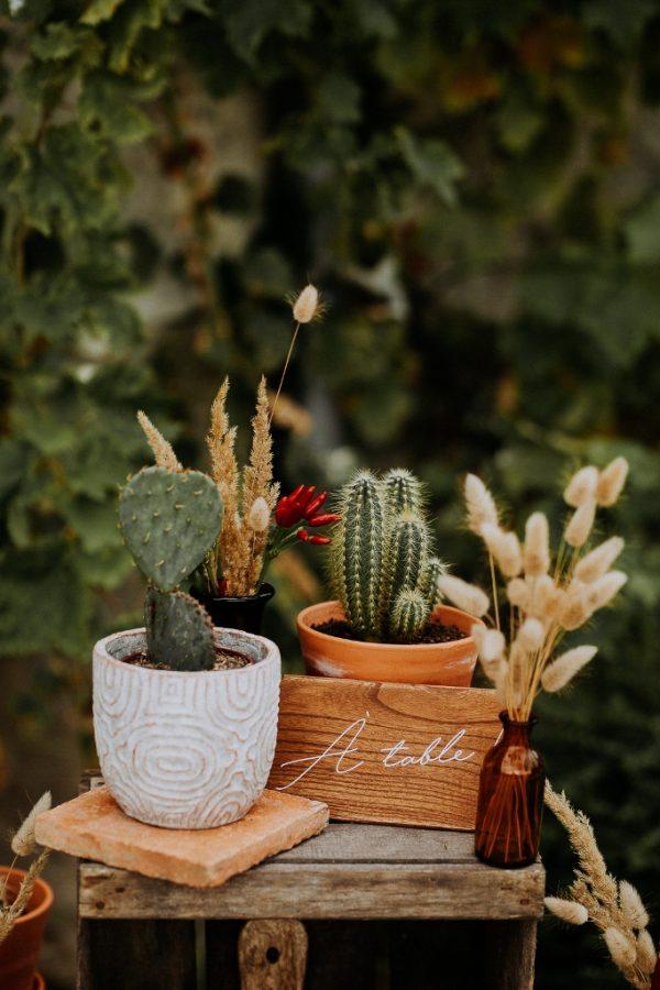 Plan de table avec cactus